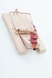 Figurina del pensionato della donna sulla trappola del topo Fotografia Stock