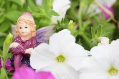 Figurina di un fatato visualizzato fra le petunie bianche e rosa Immagini Stock Libere da Diritti