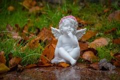 figurine ангела немногая Стоковые Фото