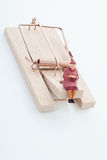 Figurine пенсионера женщины на ловушке мыши Стоковая Фотография