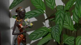 A figurine of an African girl near to a flower. A figurine of an African woman stands near to a green flower stock video footage
