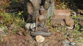 Figurine of Buddha. Light stock video footage