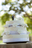 Figurine couple on wedding cake at park Stock Photography