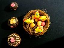 Figurine di Pasqua dei polli nel nido Fotografia Stock