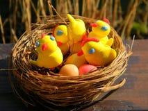 Figurine di Pasqua dei polli nel nido Fotografie Stock