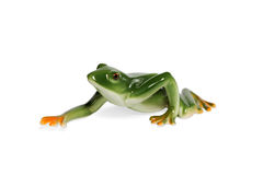 Figurine a green frog. Glass figurine green frog crawling side view isolated on white background Stock Images