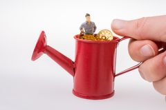 Figurine standing in a watering can full of  fake gold coins royalty free stock photography
