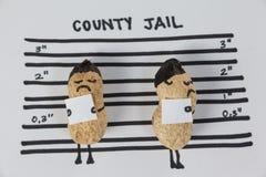 2 figurines арахиса в тюрьме графства Стоковое фото RF