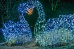 2 figurines лебедя сделанного целовать светов Стоковая Фотография RF