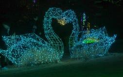 2 figurines лебедя сделанного целовать светов Стоковое Фото