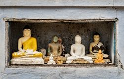 Figurines of Buddha in a niche. Several modern figurines of Buddha of the different size and workmanship, stand in a niche at one of Buddhist temples of Sri stock photos