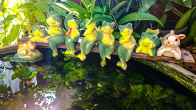 Figurines des grenouilles et du lapin sur l'étang à poissons. Image stock