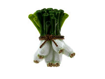 figurki zielony cebul tynk Zdjęcie Royalty Free