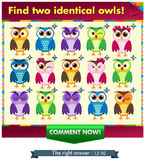 Fiind two identical owls!. Visual Game for children. Task: find two identical owls! Answer: 10 and 12 Royalty Free Stock Photo