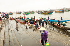 Fiish market on the beach in Quang Binh province, Vietnam Stock Image