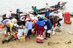 Fiish market on the beach in Quang Binh province, Vietnam Stock Photos