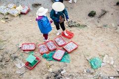 Fiishmarkt op het strand in Quang Binh-provincie, Vietnam royalty-vrije stock afbeelding