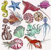 Fijado con los organismos de la vida marina stock de ilustración
