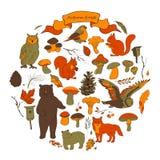 Fije con la imagen de las hojas, de las ramas, de las bayas, de las flores, de los animales y de los pájaros, elementos del otoño Foto de archivo