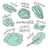 Fije con las verduras coloridas dibujadas mano del garabato Colección del vector del estilo del bosquejo Iconos planos de las ver ilustración del vector
