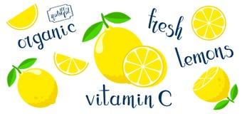 Fije con los limones planos del estilo Imagen de archivo