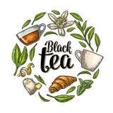 Fije con poner letras a té negro Grabado del vintage del vector libre illustration