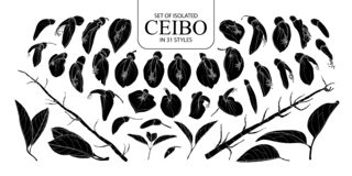 Fije de la silueta aislada Ceibo en 31 estilos imagenes de archivo