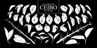 Fije de la silueta blanca aislada Ceibo en 31 estilos fotos de archivo libres de regalías