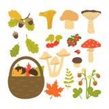 Fije de las hojas, de las setas y de las bayas de otoño aisladas en el fondo blanco Ejemplo del vector en estilo de la historieta stock de ilustración