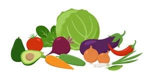 Fije de las verduras jugosas agrupadas juntas en diseño plano Ejemplo del concepto del vector de la comida de las vitaminas aisla stock de ilustración