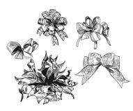 Fije de los arcos exhaustos para los elementos del diseño de la Navidad del vector del bosquejo de los presentes ilustración del vector