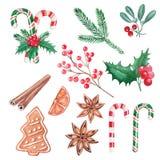 Fije de los elementos de la Navidad, bayas rojas, piruletas, acebo, cinnam stock de ilustración