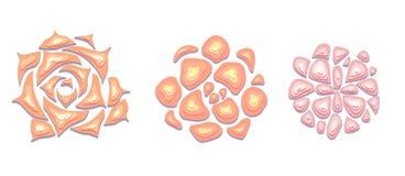 Fije de los succulents apacibles cortados del papel en color en colores pastel con una opinión superior sobre el fondo blanco ilustración del vector