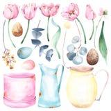 Fije de pascua pintada a mano y de ejemplos temáticos de la acuarela de la primavera con floral y los objetos: tulipanes, eucalip ilustración del vector