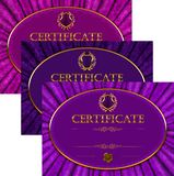 Fije de plantillas elegantes del diploma con el ornamento del cordón libre illustration