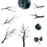 Fije de ramas, de árboles y de hojas negros ilustración del vector