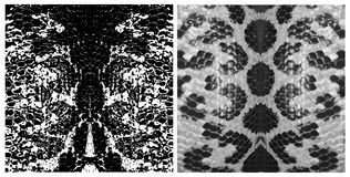 Fije de textura de las escalas de la piel de serpiente El ornamento simple, se puede utilizar para el papel de regalo, telas, pap libre illustration