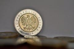 Fije de Zloty polaco de las monedas, de PLN en plata y de colores oro como símbolo de la moneda en Polonia imágenes de archivo libres de regalías