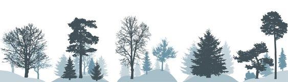 Fije del bosque del invierno, silueta de diversos árboles Ilustración del vector libre illustration