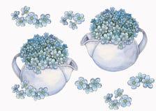 Fije del ramo de la acuarela de flores de las nomeolvides stock de ilustración