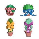 Fije el cactus en las bufandas stock de ilustración