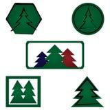Fije el logotipo spruce Cinco elementos aislados Abeto, icono ilustración del vector