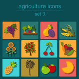 Fije la agricultura, cultivando iconos Foto de archivo