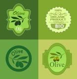 Fije la bandera de la rama de olivo Imágenes de archivo libres de regalías