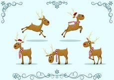 Fije la Navidad de los ciervos Fotos de archivo
