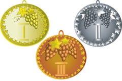 Fije las medallas con la uva Imagen de archivo libre de regalías