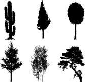 Fije los árboles aislados - 11 Foto de archivo