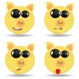 Fije los cerdos con diversas emociones Fotos de archivo libres de regalías