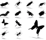 Fije los iconos - 37. Insectos Foto de archivo