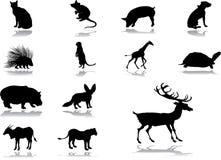 Fije los iconos - 54_. Animales ilustración del vector
